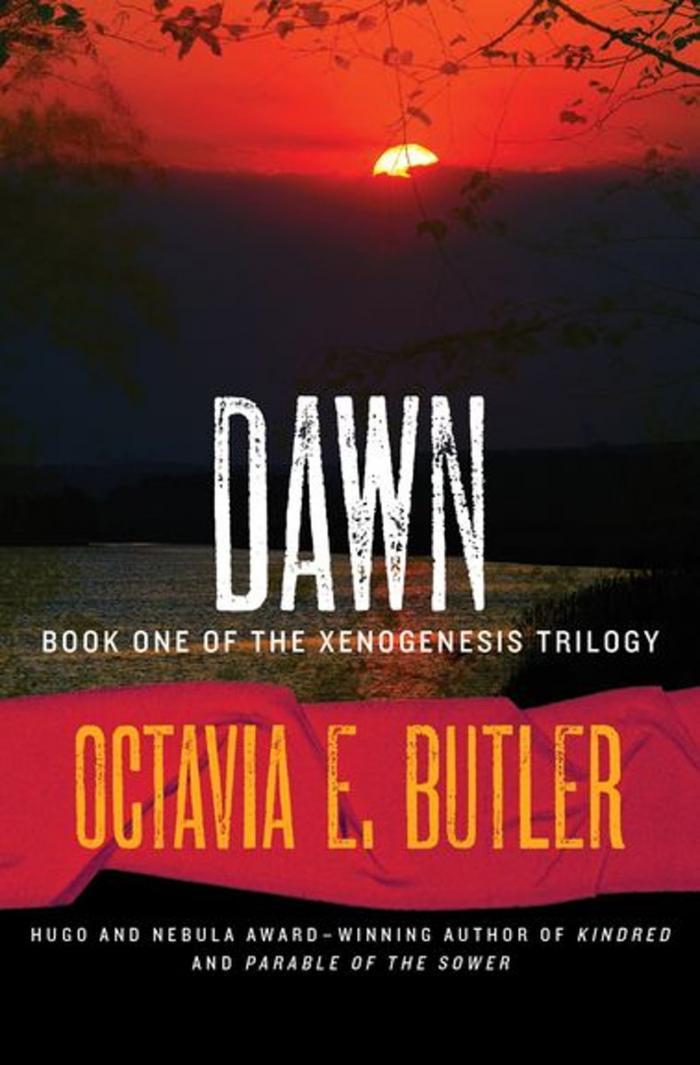 9128 Dawn